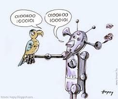 test-parrot.jpg