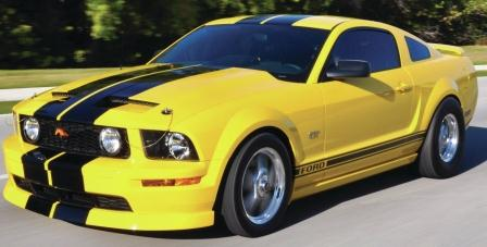 yellowstang.jpg